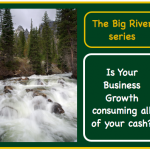 Business Finance | The Big River | Chapter 3 – What if our loan collateral doesn't cut it?