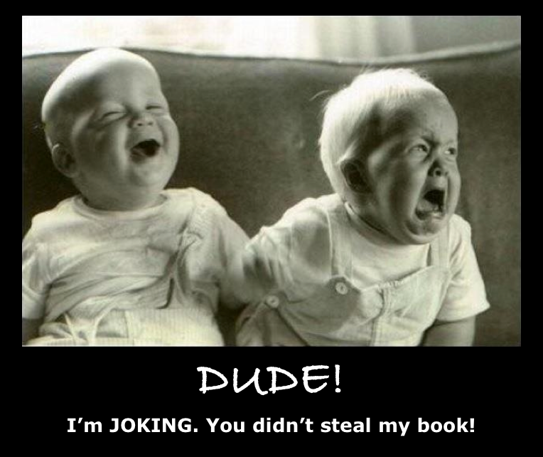 Dude. You didn't steal my book