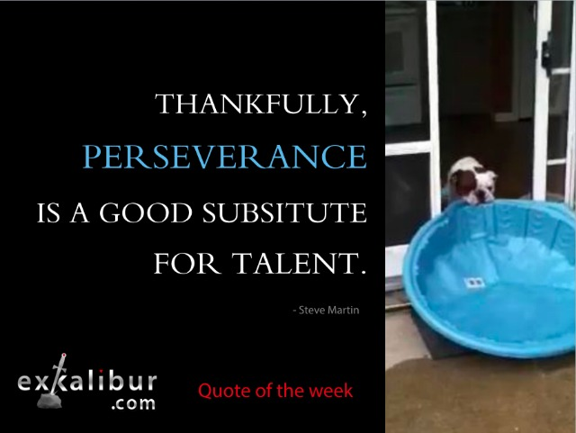 mon quote perseverance for blog