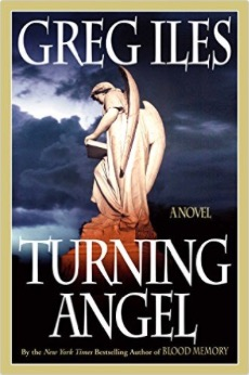 nessletter_Turning_Angel_book_cover