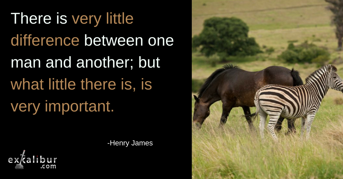 There is very little difference between one man and another, but what little there is is very important